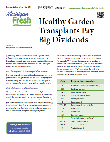 Michigan Fresh: Healthy Garden Transplants Pay Big Dividends (E3175)