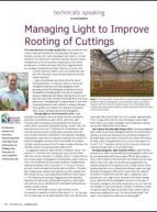 Managing light to improve rooting of cuttings