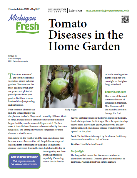 Michigan Fresh: Tomato Diseases in the Home Garden (E3170)