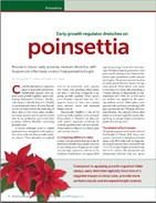 Early growth regulator drenches on poinsettia