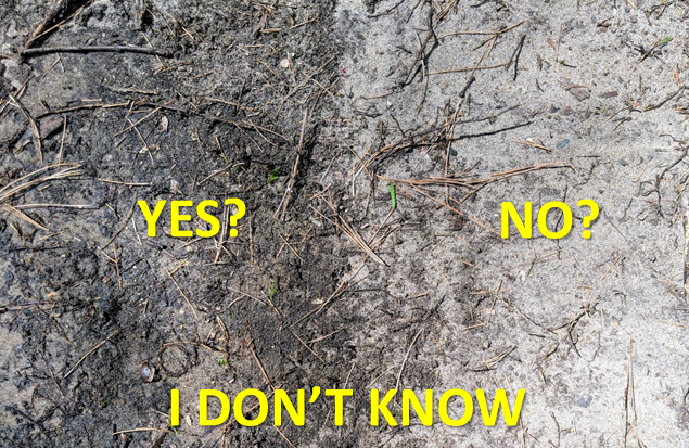 Moist versus dry soil