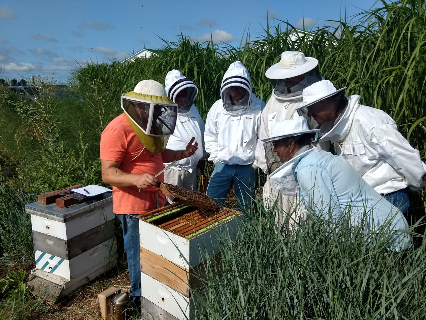 Healthy Hives Clinic